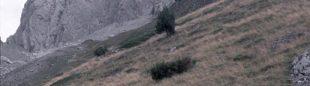 Aproximación a las Agujas de Ansabère.  (desnivelpress.com)