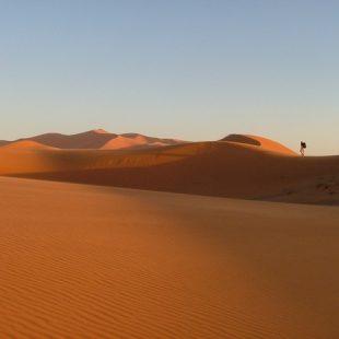 Desierto del Sahara  ()