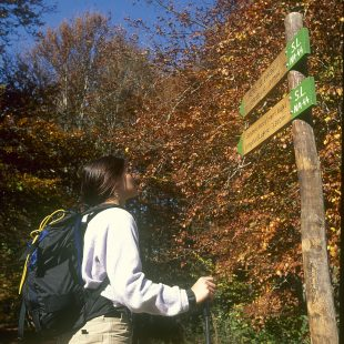 Una excursionista consulta un poste de señalización en un sendero de Navarra (Darío Rodríguez/ Desnivel Press)