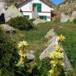 El refugio de Certascán es uno de los que componen el circuito La Porta del Cel.  ()