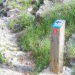 La señal del Camino del Cid utiliza en este caso un poste de un itinerario ciclista.  (UTM Desarrollos)