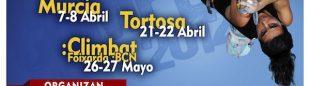 Cartel de la Copa de España 2012  (Top30)