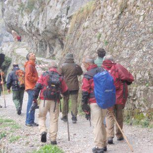 Grupo que visitó ayer el desprendimiento en el que estaban el consejero Longo y el dorector de turno del Parque Nacional Rodrigo Suárez.  ()