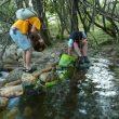 Voluntarios derriban una presa formada por piedras