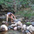 Las presas detienen el agua y atrapan a los peces.  (RedMontañas)