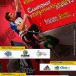 Cartel del Campeonato de España de Escalada Juvenil 2013  ()