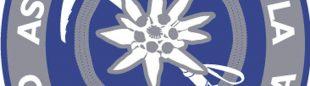 Logo Asociación Española de Guías de Montaña  ()