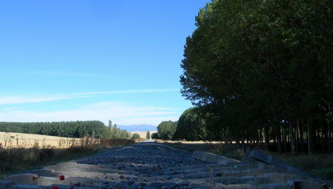 Raíles y balasto del ferrocarril Segovia-Olmedo que se está convirtiendo en vía verde. (Dioni Serrano)