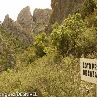 Coto Privado de Caza en el interior del Parque Natural de las Hoces del Cabriel