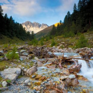El Parque Nacional Suizo es el territorio más natural del país de los Alpes. En la foto