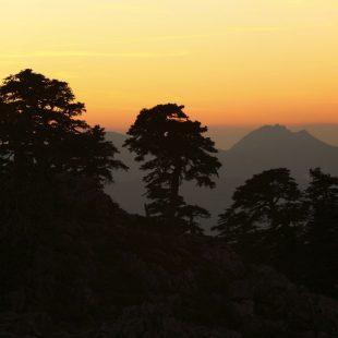 Ruta al Pico Torrecilla en la Sierra de las Nieves.  (Roberto Travesí)