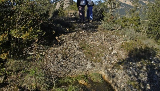 Subida al Serrat del Migdia en la Sierra de Picancel  (Rafael López Monné)