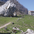 Senderista en Picos de Europa.  (FEDME)