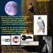 Cartel de las Jornadas Ornitológicas de Cuenca