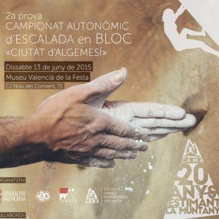 Cartel 2ª prueba del Campeonato Autonómico de Escalada en Bloque Ciutat dAlgemesí 2015  ()
