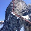 Línea de Black Roses a la torre norte del Devils Paw (Alaska)  (Col. R.Schaeli)