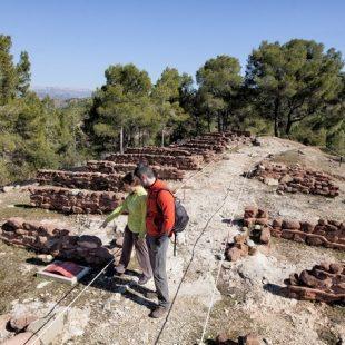 Poblado prehistórico de Puig Roig