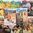 De la portada 1 a la 100 de la revista Escalar  ()