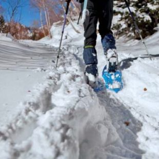 Huellas de las raquetas de nieve  (Raúl García)