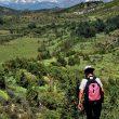 Una excursionista camina por los silencios de la cara norte de Guara