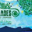 Cartel horizontal Festival Pyrenades 2016  ()