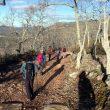 Fin de un tramo de la bajada del Rocigalgo a las Becerras por Sierra Fría con algo de cemento en el suelo  (Diego Gallardo)