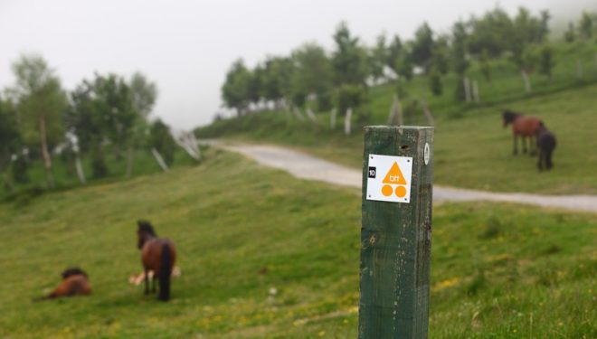 Señalización en un camino del centro BTT de Busturialdea-Urdabai en Euskadi  (Basquetour)