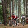 Grupo de ciclistas en el Bosque de Oma del Centro BTT de Busturialdea-Urdabai en Euskadi  (Basquetour)