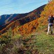 La belleza de los paisajes que rodean el habitat del Oso Pardo también es sujeto de grandes fotografías.  ()