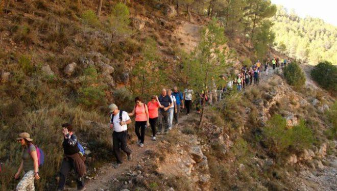 Participantes en una de las rutas de la tercera edición. Foto: Senderismo Albacete  ()