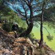 El Camino Natural del Ebro se ajusta a la orilla del río en un tramo entre Móra d'Ebre y Benifalle  (RAFAEL LÓPEZ MONNÉ)