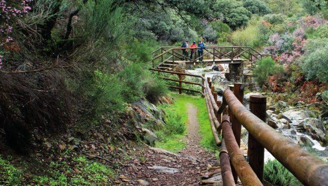 Excursionistas en la senda de los Puentecitos