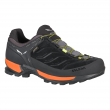 Zapatilla Mountain Trainter GTX de Salewa  (Salewa)