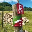 La señal bicolor de la ruta del Ter. BTT por los Pirineos de Cataluña. Centro BTT Ripollés. ()