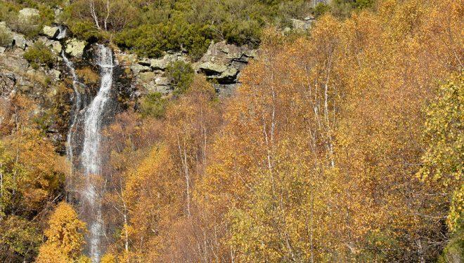 La cascada del río Salto ubicada en Abedular de Corueñón (Cordillera Cantábrica).  (Anxo Rial)