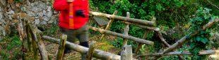 La fuente de Valdejorán se rodea de encinas