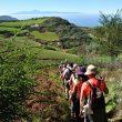 Gran Canaria Walking Festival 2017 es el encuentro internacional de senderismo de Gran Canaria ()