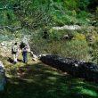 Senderistas en la ruta de Robledal de Mosomero en la Sierra de Algairén.  (Eduardo Viñales Cobos)