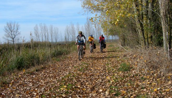 Cicloturistas por Canal de Castilla