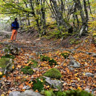 Entremonte 1 siguiendo el arroyo del Riocerezo