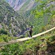 Ferrata del Parque Multiaventura de Poga (Asturias)  ()