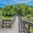 Paisaje perteneciente a la Great Trail de Canadá  (Lifeology)