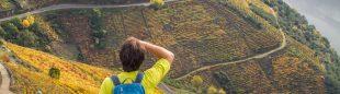 Excursionista contemplando Viñedos del cañón del Sil (Lugo)  (Víctor Barro)