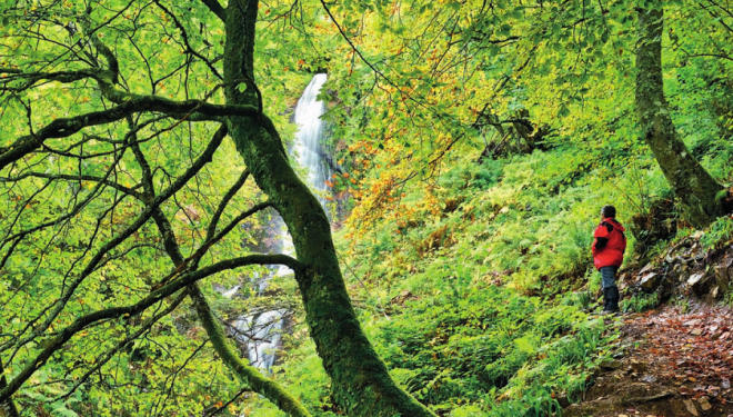 Cascada del Xiblu en el Hayedo de Montegrande (Asturias)