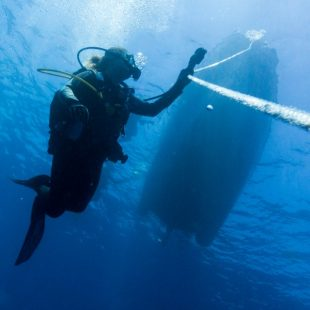 Disfruta del submarinismo y del snorkel en las costas de Cataluña.
