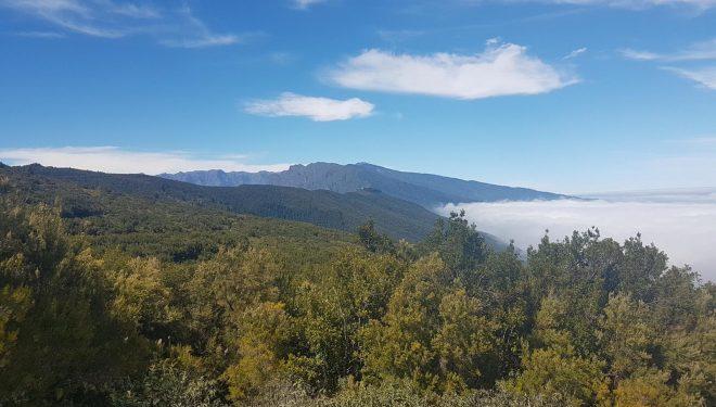 Mirador Camino de la Faya