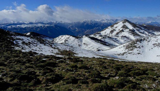 Los Picos de Europa vistos desde el Torbina.
