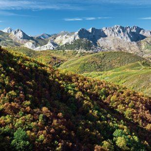 El camino por el que recorremos el bosque de Pardomino alterna tramos de denso follaje con claros que nos ofrecen magníficas vistas del valle y de las montañas próximas.
