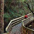 La pasarela que recorre la última parte del cañón del Mao tiene una longitud de 1.500 metros y se construyó en 2011 con financiación del Ministerio de Medio Ambiente.
