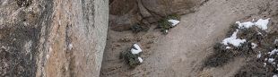 "Nick Muehlhausen en el tsunami ""Too Big to Flail"" (7C+), de 14 metros"
